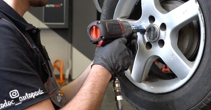 Wechseln Radlager am SEAT Ibiza III Schrägheck (6L) 1.9 SDI 2005 selber