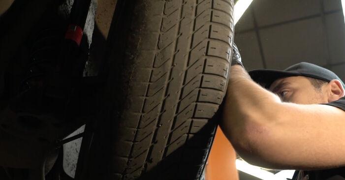 Wechseln Stoßdämpfer am SEAT Ibiza III Schrägheck (6L) 1.9 SDI 2005 selber