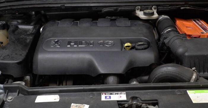 307 SW (3H) 2.0 HDi 135 2005 1.6 16V Ölfilter - Handbuch zum Wechsel und der Reparatur eigenständig