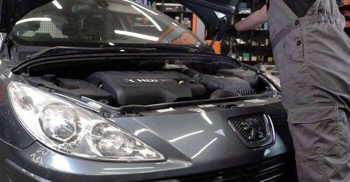 Hur byta Multirem på Peugeot 307 SW 2002 – gratis PDF- och videomanualer