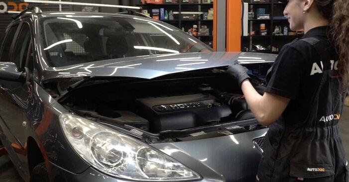 Wie Bremsscheiben Peugeot 307 SW 1.6 HDI 110 2002 tauschen - Kostenlose PDF- und Videoanleitungen