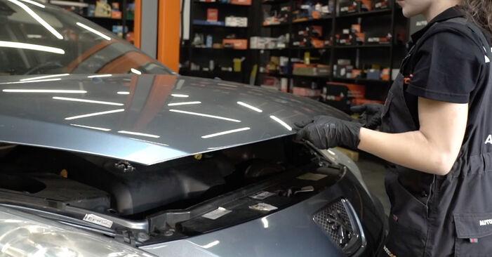 Bremsscheiben beim PEUGEOT 307 1.6 BioFlex 2009 selber erneuern - DIY-Manual