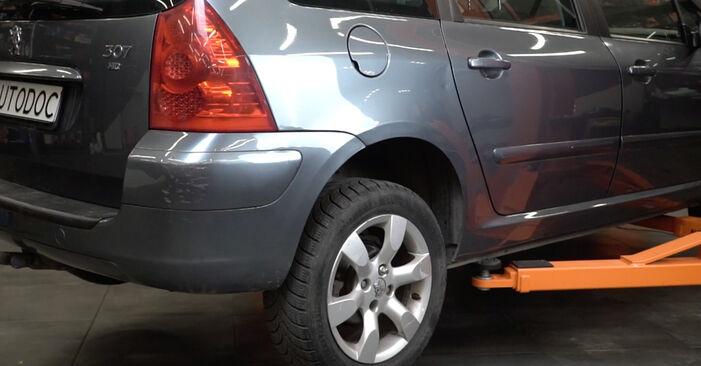 Bytte Peugeot 307 SW 1.6 16V 2004 Fjærer: gratis verkstedsveiledning