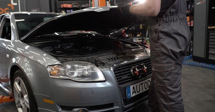 Kaip pakeisti V formos rumbuotas diržas la Audi A4 B7 Sedanas 2004 - nemokamos PDF ir vaizdo pamokos