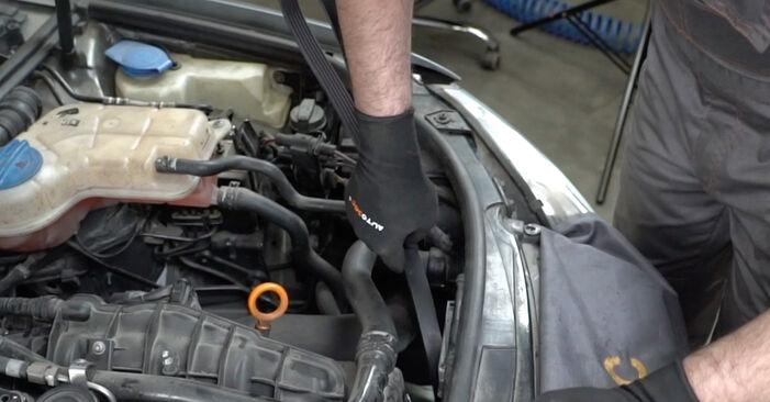 Kaip pakeisti V formos rumbuotas diržas AUDI A4 Sedanas (8EC, B7) 2004: atsisiųskite PDF instrukciją ir vaizdo pamokas