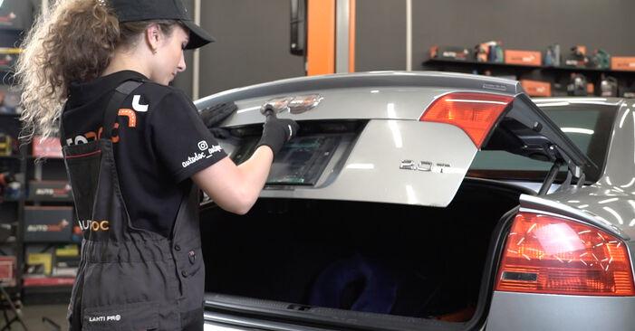 Jak vyměnit Vzpery Kufra na Audi A4 B7 Sedan 2004 - bezplatné PDF a video návody