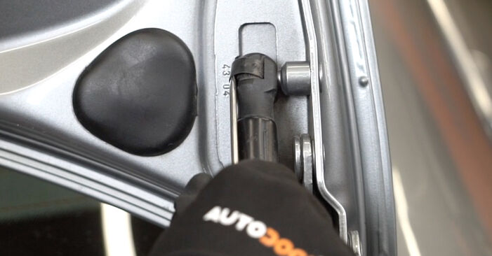 Jak vyměnit AUDI A4 Sedan (8EC, B7) 2.0 TDI 16V 2005 Vzpery Kufra - návody a video tutoriály krok po kroku.