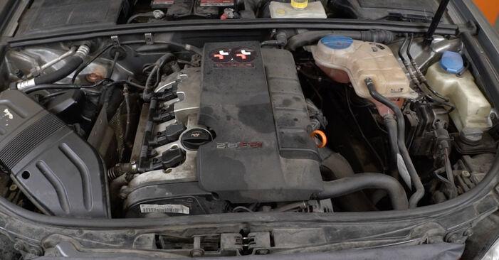 Wie Ölfilter AUDI A4 Limousine (8EC, B7) 1.9 TDI 2005 austauschen - Schrittweise Handbücher und Videoanleitungen