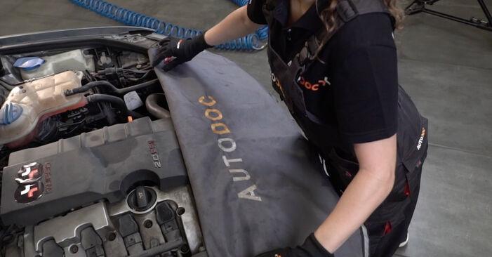 Wie Luftfilter AUDI A4 Limousine (8EC, B7) 1.9 TDI 2005 austauschen - Schrittweise Handbücher und Videoanleitungen