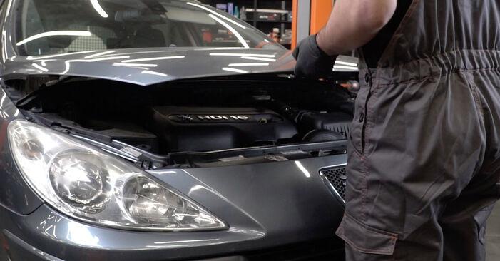 Wie Motorlager Peugeot 307 SW 1.6 HDI 110 2002 tauschen - Kostenlose PDF- und Videoanleitungen