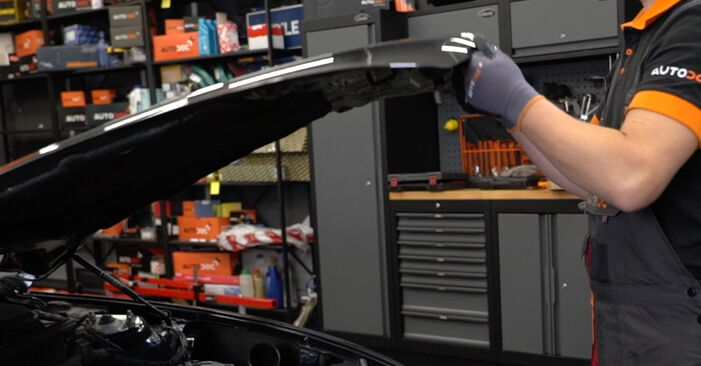 Wie Radlager Alfa Romeo 147 937 1.9 JTDM 8V (937.AXD1A, 937.AXU1A, 937.BXU1A) 2000 tauschen - Kostenlose PDF- und Videoanleitungen