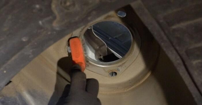 Schritt-für-Schritt-Anleitung zum selbstständigen Wechsel von Nissan Qashqai j10 2011 1.6 dCi Federn