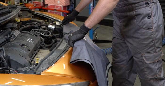 Jak vyměnit Zapalovaci civka na PEUGEOT 207 (WA_, WC_) 2008 - tipy a triky