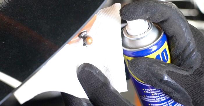 Jak vyměnit Vzpery Kufra na PEUGEOT 207 (WA_, WC_) 2008 - tipy a triky
