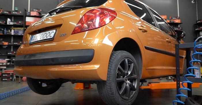 Peugeot 207 WA 1.6 HDi 2008 Radlager wechseln: Gratis Reparaturanleitungen