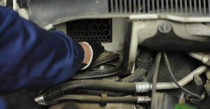 Federn T5 Multivan 1.9 TDI 2005 wechseln: Kostenlose Reparaturhandbücher