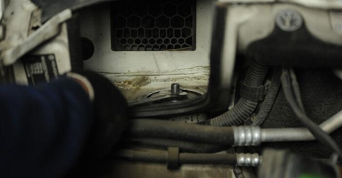 Hoe VW MULTIVAN 2.0 BiTDI 2007 Veerpootlager wisselen - online eenvoudige handleiding