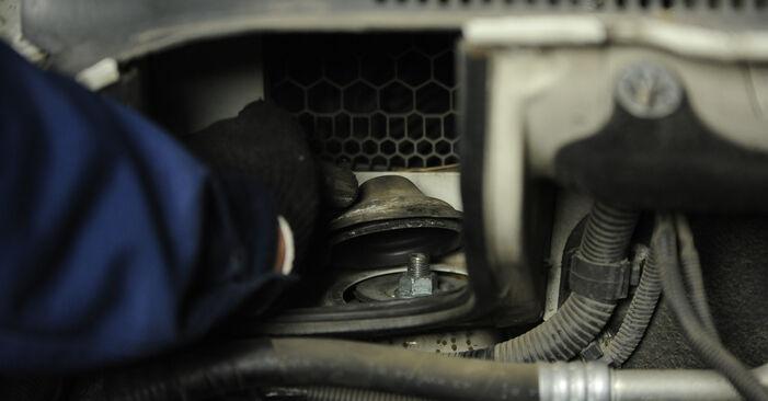 Hoe Veerpootlager wisselen VW Multivan V (7HM, 7HN, 7HF, 7EF, 7EM, 7EN) 2008: download pdf-gidsen en video-tutorials