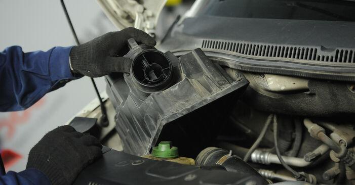 Veerpootlager VW MULTIVAN 2.0 TDI vervangen: online leidraden en videohandleidingen