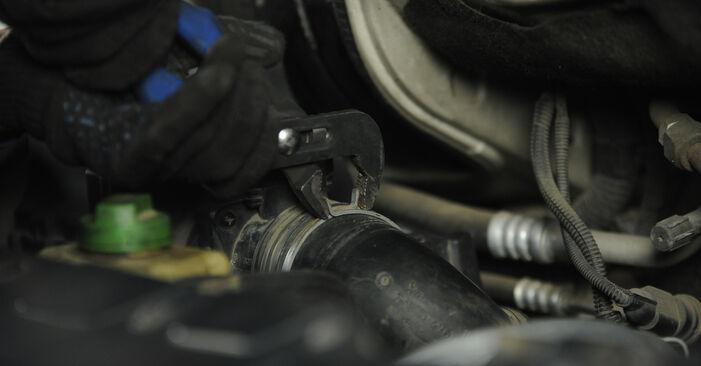 Veerpootlager zelf wisselen VW Multivan T5 2013 2.5 TDI