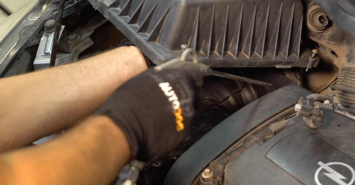 Wie kompliziert ist es, selbst zu reparieren: Luftfilter am Opel Zafira B 1.9 CDTI (M75) 2011 ersetzen – Laden Sie sich illustrierte Wegleitungen herunter