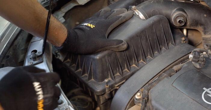 Wie lange braucht der Teilewechsel: Luftfilter am Opel Zafira B 2013 - Einlässliche PDF-Wegleitung