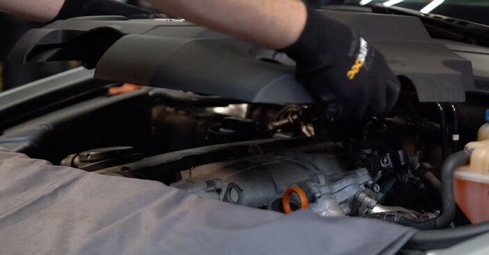 Bytte Audi A6 4f2 2.0 TDI 2006 Drivstoffilter: gratis verkstedsveiledning