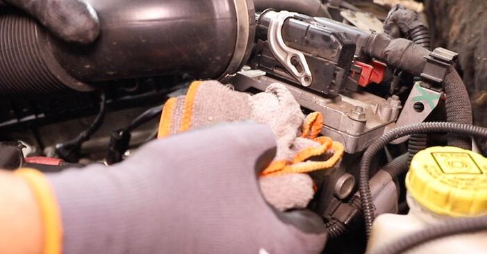 Thermostat am ALFA ROMEO 147 (937) 1.9 JTD 16V (937.AXG1B, 937.BXG1B) 2005 wechseln – Laden Sie sich PDF-Handbücher und Videoanleitungen herunter