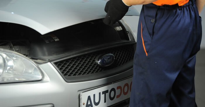 Wie schwer ist es, selbst zu reparieren: Bremsscheiben Ford Focus mk2 Limousine 1.4 2011 Tausch - Downloaden Sie sich illustrierte Anleitungen