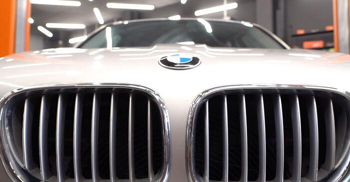 Podrobná doporučení pro svépomocnou výměnu BMW E53 2005 4.8 is Vzduchovy filtr