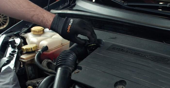 Byta Ford Fiesta Mk5 1.4 16V 2003 Oljefilter: gratis verkstadsmanualer