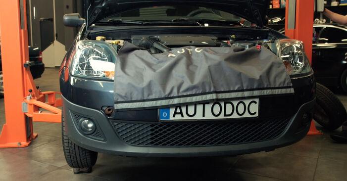 Byt Oljefilter på FORD Fiesta Mk5 Hatchback (JH1, JD1, JH3, JD3) 1.25 16V 2004 själv