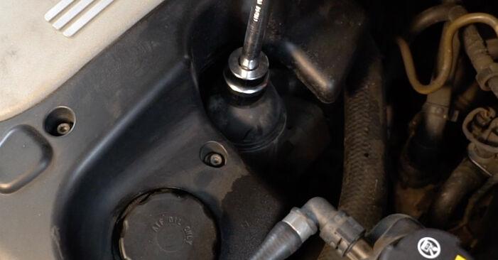BMW 5 SERIES 520d 2.0 Ölfilter ausbauen: Anweisungen und Video-Tutorials online