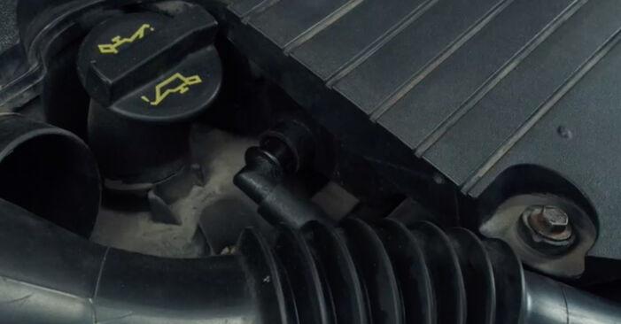 Wechseln Zündkerzen am FORD Fiesta Mk5 Schrägheck (JH1, JD1, JH3, JD3) 1.25 16V 2004 selber