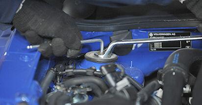Devi sapere come rinnovare Ammortizzatori su VW LUPO 2005? Questo manuale d'officina gratuito ti aiuterà a farlo da solo