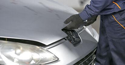 Wie Kraftstofffilter beim Peugeot 407 Limousine 2004 gewechselt werden - Unentgeltliche PDF- und Videoanweisungen