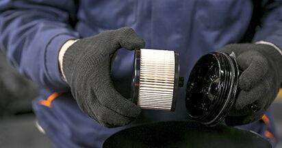 Wie man Kraftstofffilter am PEUGEOT 407 (6D_) 2008 ersetzt - Hinweise und Ratschläge