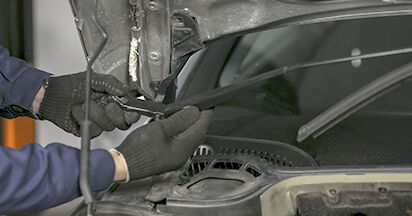 Wie Federn Peugeot 407 Limousine 2.0 HDi 135 2004 tauschen - Kostenlose PDF- und Videoanleitungen
