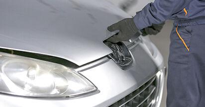 Federn Peugeot 407 Limousine 2.0 2006 wechseln: Kostenlose Reparaturhandbücher