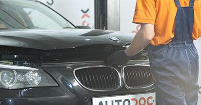 Wie Domlager BMW 5 (E60) 525d 2.5 2002 austauschen - Schrittweise Handbücher und Videoanleitungen