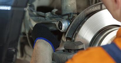 Devi sapere come rinnovare Supporto Ammortizzatore su BMW 5 SERIES 2008? Questo manuale d'officina gratuito ti aiuterà a farlo da solo