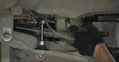 5 (E60) 525d 3.0 2002 Supporto Ammortizzatore manuale di officina di ricambio fai da te