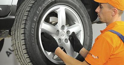 Schritt-für-Schritt-Anleitung zum selbstständigen Wechsel von Hyundai Santa Fe cm 2010 2.2 CRDi GLS Bremsscheiben