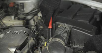 Peugeot 406 Combi 2.0 16V 1998 Vzduchovy filtr výměna: bezplatné návody z naší dílny