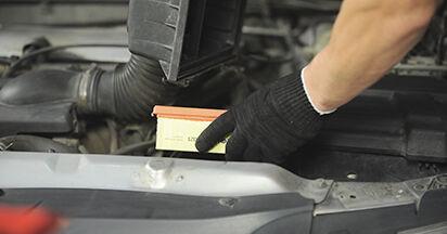 Jak dlouho trvá výměna: Vzduchovy filtr na autě Peugeot 406 Combi 2004 - informační PDF návod