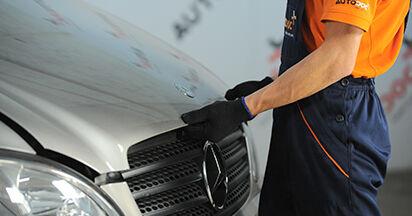 Wie schwer ist es, selbst zu reparieren: Ölfilter Mercedes Viano W639 CDI 2.0 (639.811, 639.813, 639.815) 2009 Tausch - Downloaden Sie sich illustrierte Anleitungen