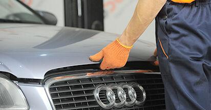 Kraftstofffilter Audi A4 b7 1.9 TDI 2006 wechseln: Kostenlose Reparaturhandbücher