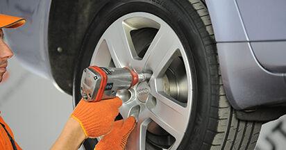 Hur byta Fjäderbenslagring på Audi A4 b7 2004 – gratis PDF- och videomanualer