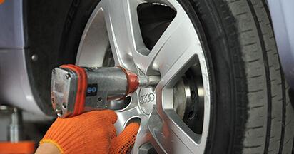 Radlager am AUDI A4 Avant (8ED, B7) 3.0 TDI quattro 2004 wechseln – Laden Sie sich PDF-Handbücher und Videoanleitungen herunter