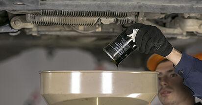Ölfilter Octavia 1z5 2.0 TDI 16V 2006 wechseln: Kostenlose Reparaturhandbücher